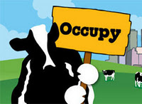 OCCUPY-WALL-STREET-FOOD-COW
